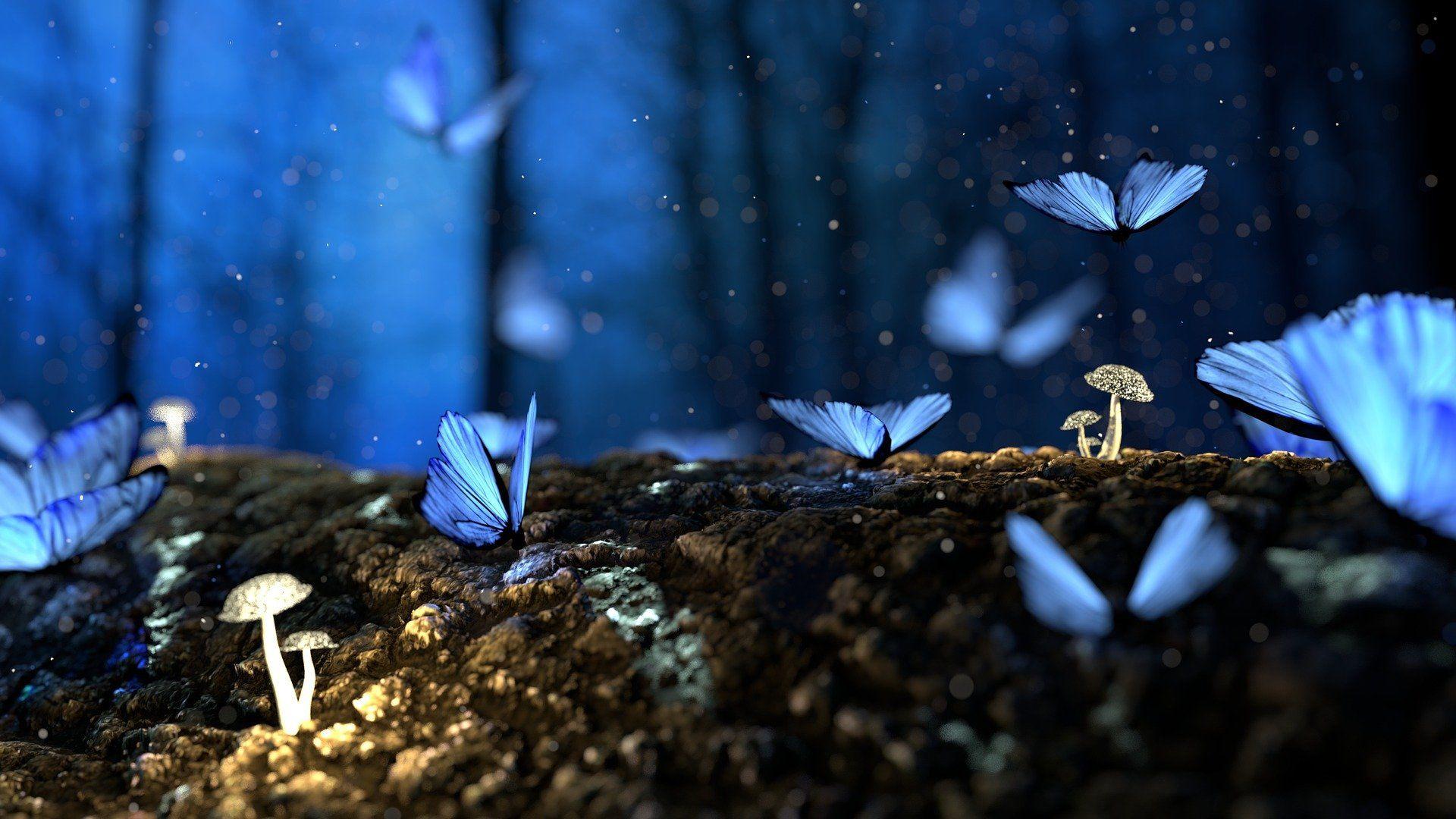 19. týden: Víčka lehká jako motýlí křídla